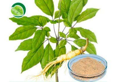 Suma Natural Extract