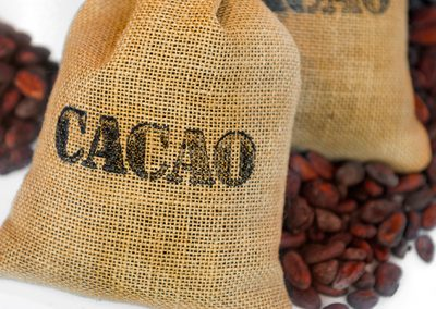 Gallery Cacao